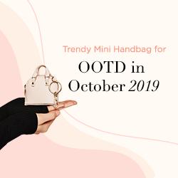Trendy Mini Handbag